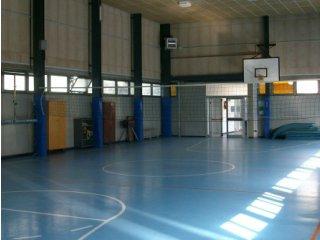 """Fotografia della palestra della sede: ampia sala senza persone, con pavimento blu riportante le linee di un campo di basket e, sul fondo, un canestro"""" title=""""La palestra della sede dell'Istituto"""
